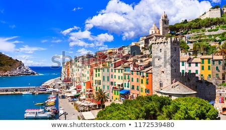 beautiful-coastal-town-portovenere-cinque-450w-1172539480.jpg