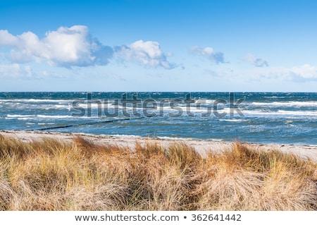 coastal-area-mecklenburgwestern-pomerania-scenery-450w-362641442.jpg