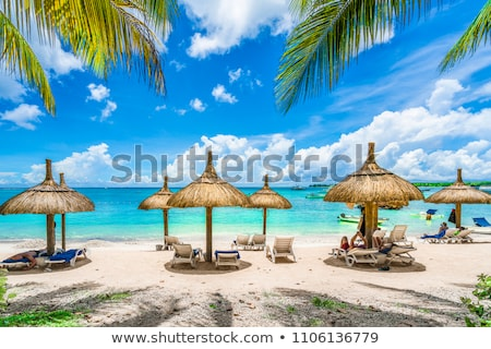 public-beach-lounge-chairs-umbrellas-450w-1106136779.jpg